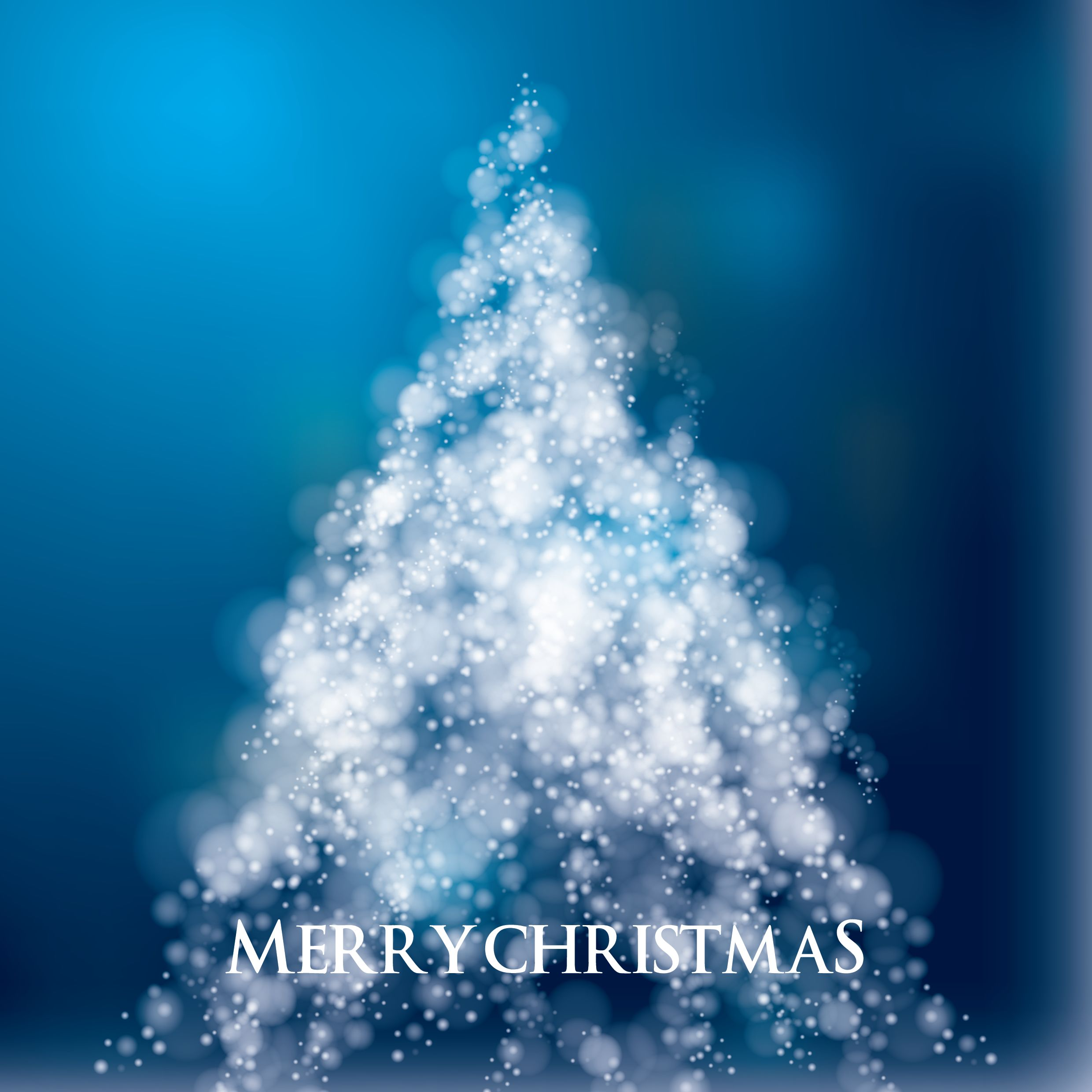 Wishing you merry Christmas and happy new year