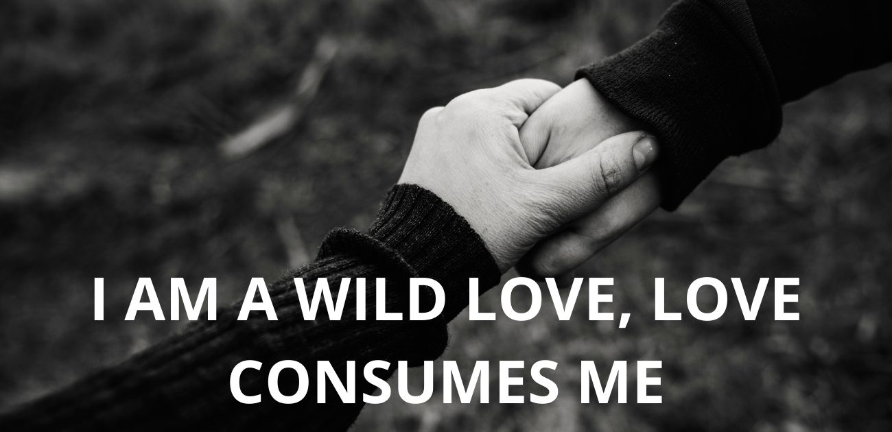 I am a wild love, love consumes me