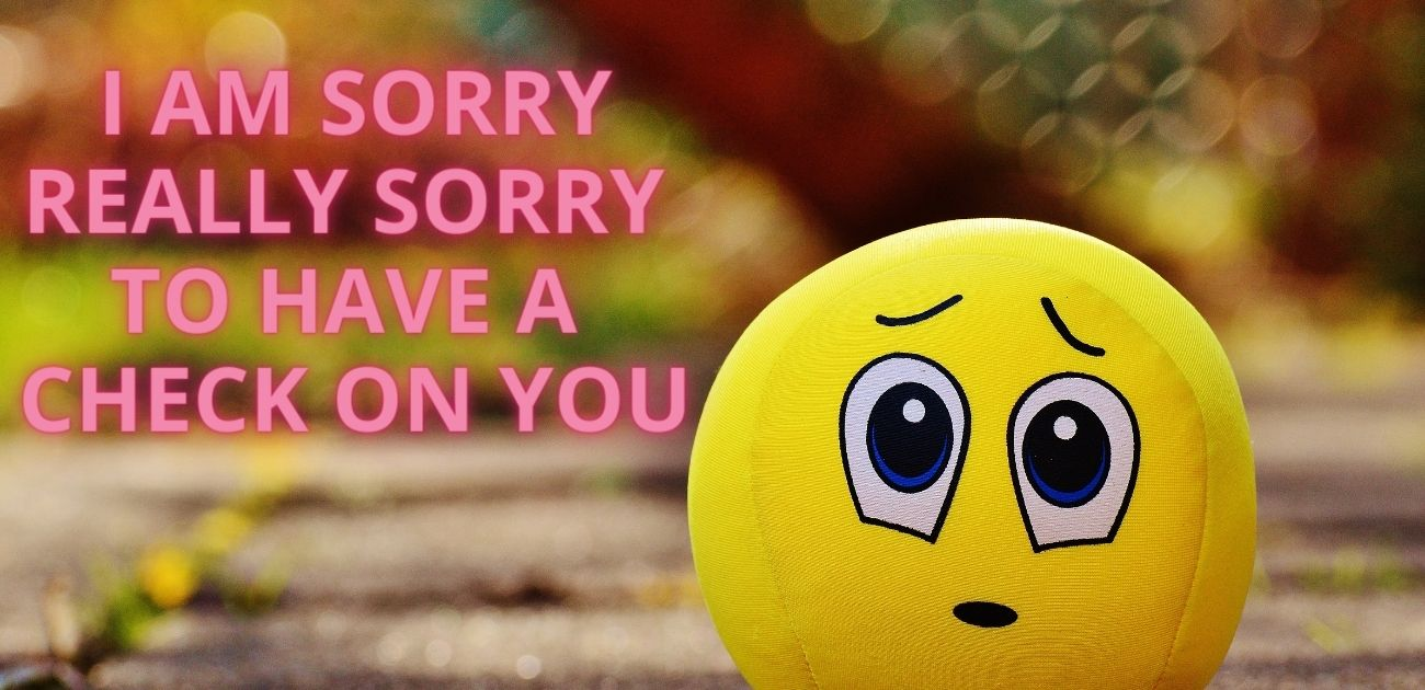 I am sorry really sorry to have a check on you