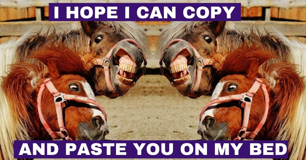 I hope I can copy and paste you on my bed