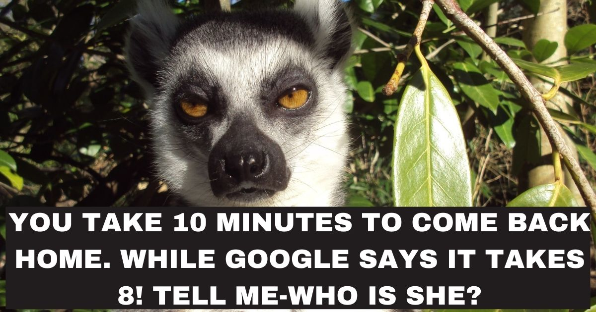 You take 10 minutes to come back home. While Google says it takes 8! Tell me-Who is she