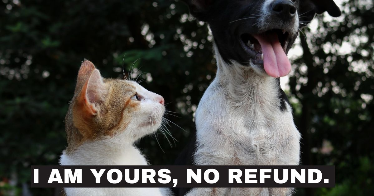 i am yours no refund