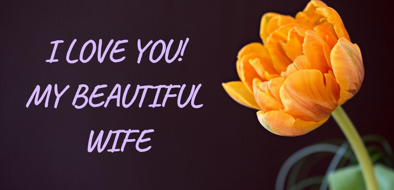 I love you! My beautiful wife