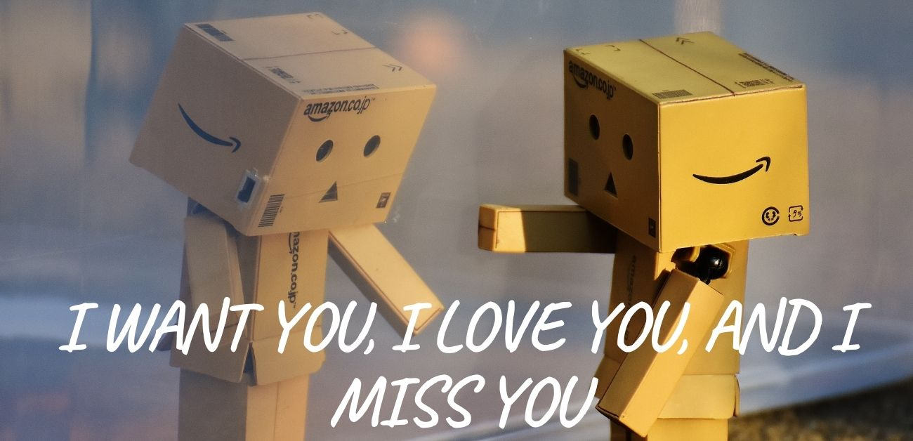 I want you, I love you, and I miss you